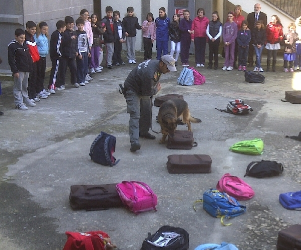 https://www.ragusanews.com//immagini_articoli/01-04-2011/il-cane-finanziere-itla-fa-lezione-a-scuola-a-ragusa-500.jpg