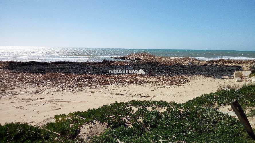 http://www.ragusanews.com//immagini_articoli/01-04-2017/diversi-incendi-canne-spiaggiate-500.jpg