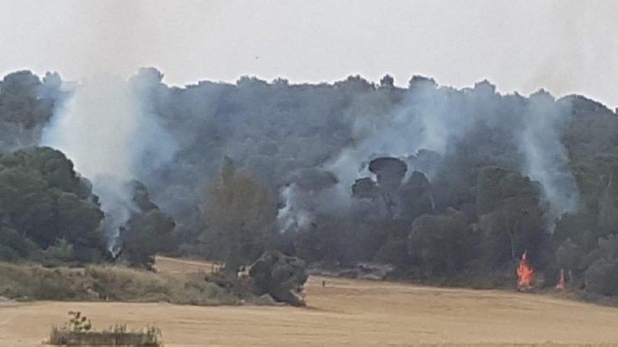 https://www.ragusanews.com//immagini_articoli/01-05-2021/incendio-nella-pre-riserva-della-valle-dei-pini-d-aleppo-500.jpg