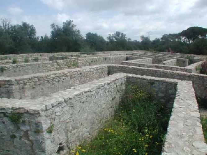 http://www.ragusanews.com//immagini_articoli/01-06-2015/il-labirinto-del-castello-di-donnafugata-500.jpg
