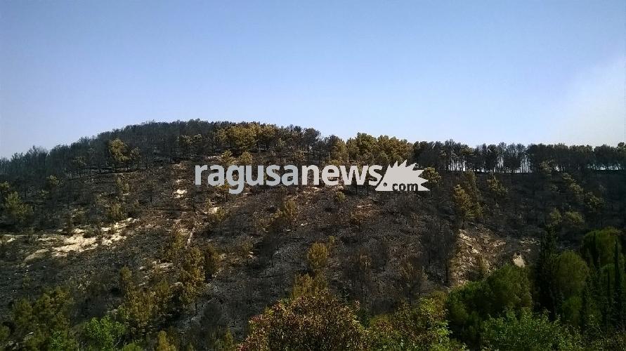 http://www.ragusanews.com//immagini_articoli/01-07-2017/chiaramonte-lipotesi-disastro-ambientale-colposo-500.jpg