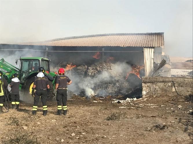 http://www.ragusanews.com//immagini_articoli/01-07-2017/iblei-assediati-incendi-500.jpg