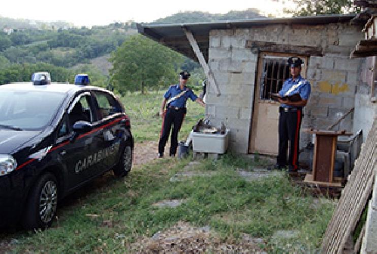 https://www.ragusanews.com//immagini_articoli/01-08-2012/trovato-a-ragusa-l-omicida-di-san-leucio-del-sannio-500.jpg