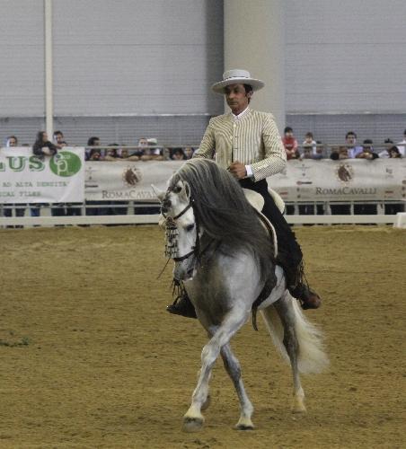http://www.ragusanews.com//immagini_articoli/01-08-2014/figure-equestri-di-scuola-spagnola-a-donnalucata-500.jpg