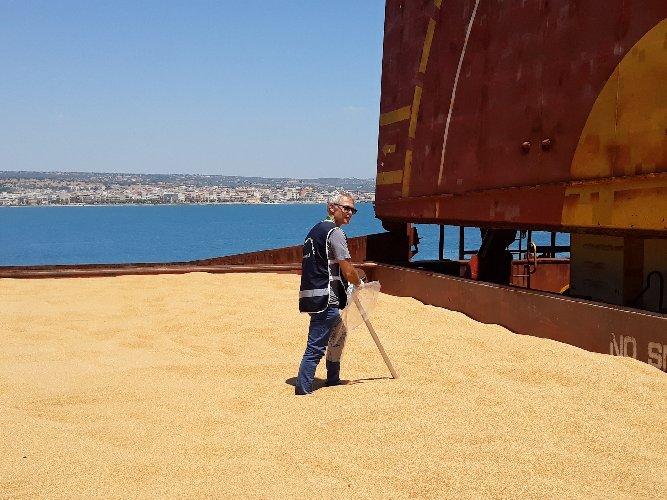https://www.ragusanews.com//immagini_articoli/01-08-2019/nave-grano-canadese-deputati-m5s-al-porto-di-pozzallo-500.jpg