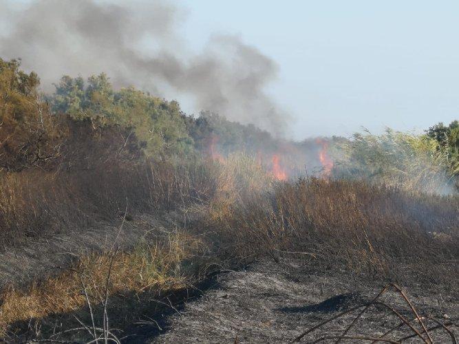 https://www.ragusanews.com//immagini_articoli/01-09-2018/canneto-fuoco-porto-ulisse-500.jpg