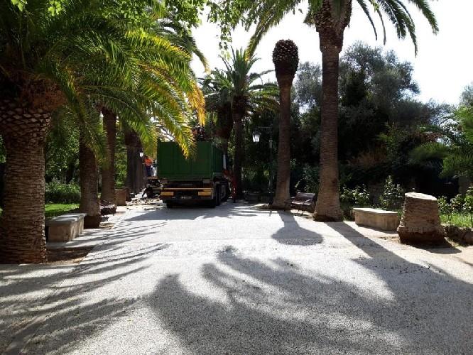 https://www.ragusanews.com//immagini_articoli/01-09-2020/giardini-iblei-abbattute-11-palme-500.jpg