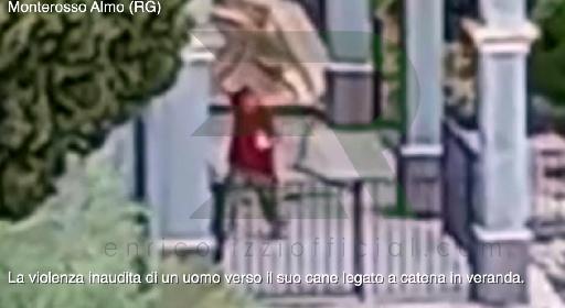 https://www.ragusanews.com//immagini_articoli/01-09-2021/monterosso-almo-massacra-di-bastonate-il-cane-il-video-e-allucinante-280.jpg