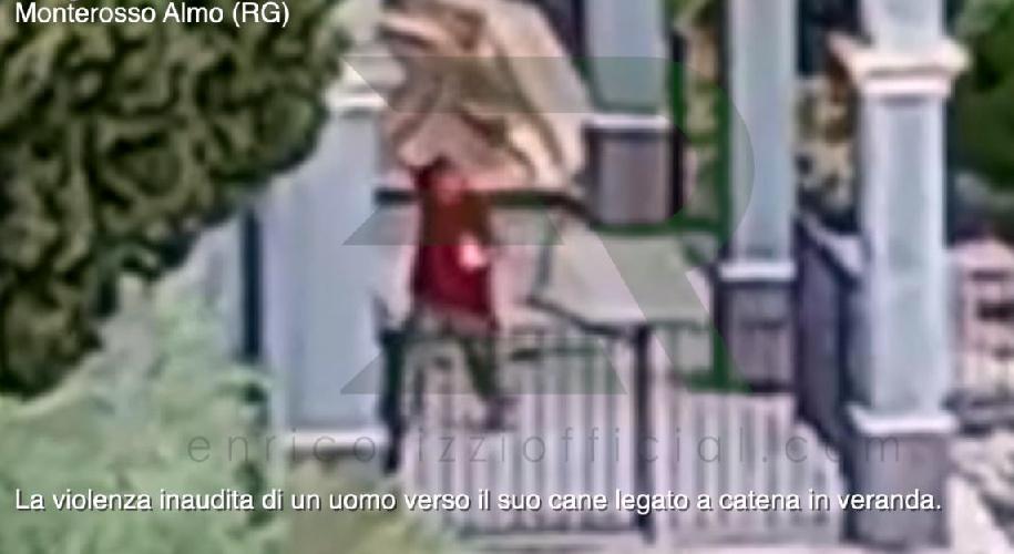 https://www.ragusanews.com//immagini_articoli/01-09-2021/monterosso-almo-massacra-di-bastonate-il-cane-il-video-e-allucinante-500.jpg