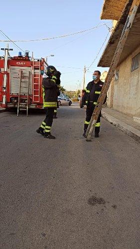 https://www.ragusanews.com//immagini_articoli/01-10-2020/1601550739-a-scicli-il-gatto-intrappolato-i-pompieri-e-la-macaia-1-500.jpg