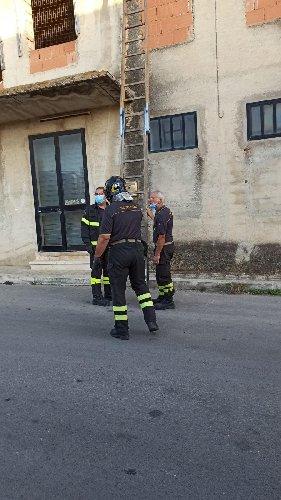 https://www.ragusanews.com//immagini_articoli/01-10-2020/1601550739-a-scicli-il-gatto-intrappolato-i-pompieri-e-la-macaia-2-500.jpg