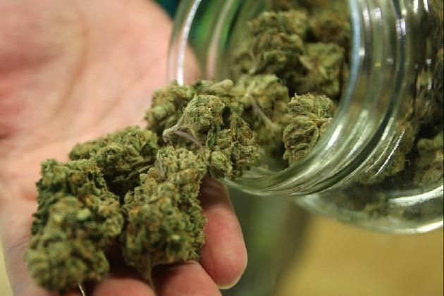 http://www.ragusanews.com//immagini_articoli/01-11-2016/un-kg-di-marijuana-nel-podere-arrestato-52enne-incensurato-420.jpg