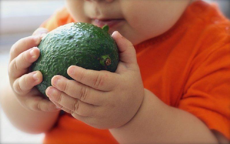 https://www.ragusanews.com//immagini_articoli/01-11-2019/cos-e-e-funziona-la-baby-diet-la-dieta-dei-neonati-500.jpg