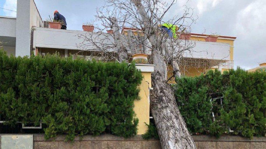 https://www.ragusanews.com//immagini_articoli/02-01-2018/sicilia-morsa-vento-ragusa-sfiora-500.jpg