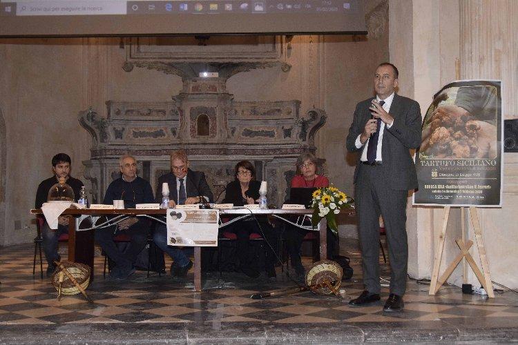 https://www.ragusanews.com//immagini_articoli/02-02-2020/un-fiuto-eccezionale-per-il-tartufo-un-disegno-di-legge-a-ragusa-500.jpg