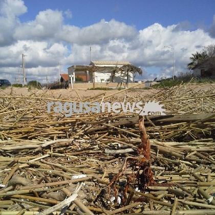 http://www.ragusanews.com//immagini_articoli/02-03-2017/sindaco-vieta-accesso-spiaggia-lentini-spinsanta-420.jpg