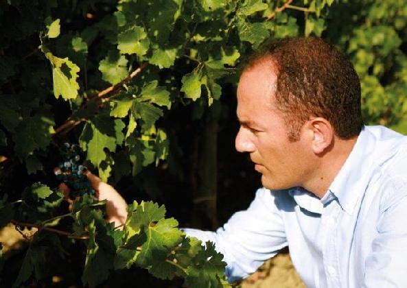 http://www.ragusanews.com//immagini_articoli/02-03-2017/vino-consorzio-tutela-vino-sicilia-carolina-420.jpg