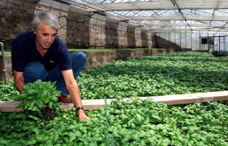 https://www.ragusanews.com//immagini_articoli/02-03-2018/agricoltura-futuro-parla-ragusa-500.jpg