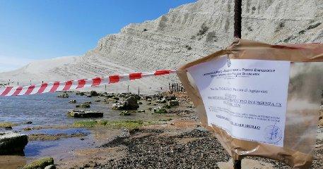 https://www.ragusanews.com//immagini_articoli/02-03-2020/dopo-il-sequestro-la-scala-dei-turchi-guardie-forestali-240.jpg