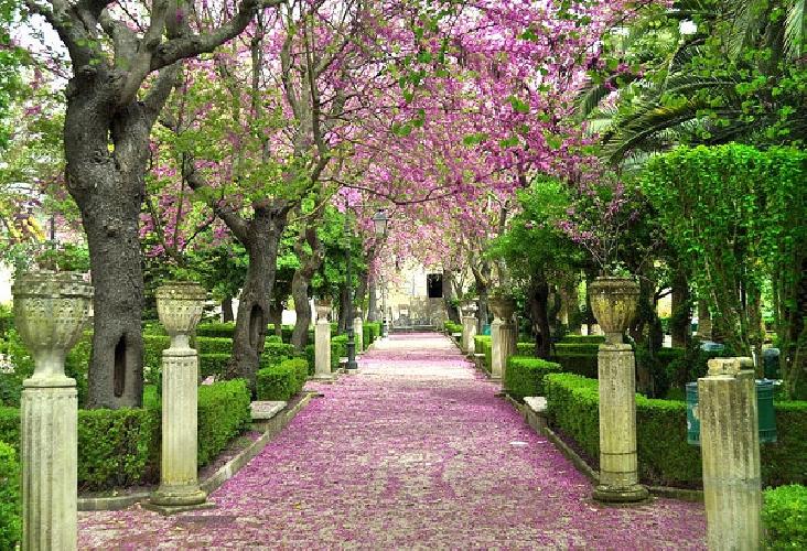 https://www.ragusanews.com//immagini_articoli/02-08-2017/viale-giardini-iblei-intitolato-pamela-canzonieri-500.jpg