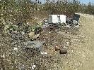 https://www.ragusanews.com//immagini_articoli/02-09-2014/ecco-un-altro-intruso-alla-scogliera-di-cava-d-aliga-100.jpg