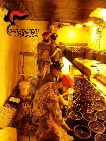 https://www.ragusanews.com//immagini_articoli/02-10-2020/1601623341-piantagione-di-marijuana-in-un-bunker-sotterraneo-un-arresto-1-280.jpg