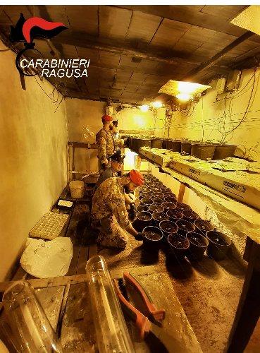 https://www.ragusanews.com//immagini_articoli/02-10-2020/1601623341-piantagione-di-marijuana-in-un-bunker-sotterraneo-un-arresto-2-500.jpg