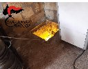 https://www.ragusanews.com//immagini_articoli/02-10-2020/piantagione-di-marijuana-in-un-bunker-sotterraneo-un-arresto-100.jpg