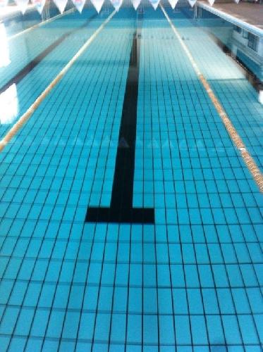 https://www.ragusanews.com//immagini_articoli/02-11-2013/piscina-comunale-le-colpe-dellintorbidamento-500.jpg