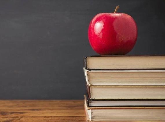 http://www.ragusanews.com//immagini_articoli/02-11-2016/insegnante-laureata-in-lettere-impartisce-lezioni-private-420.jpg