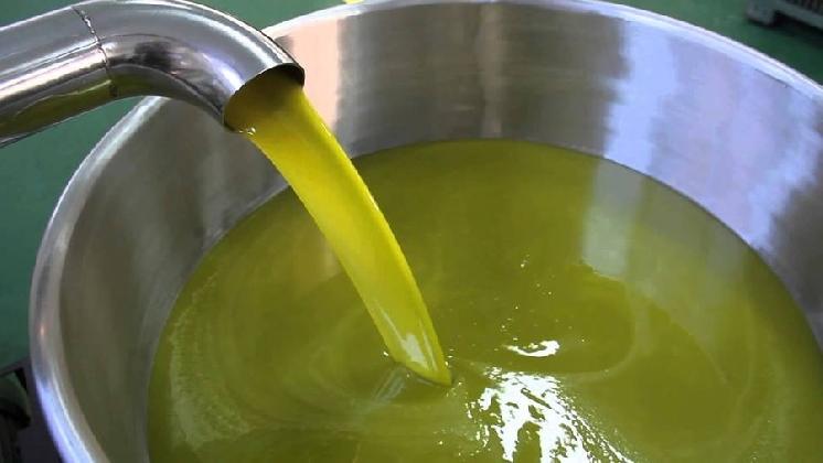 https://www.ragusanews.com//immagini_articoli/02-12-2016/aristoil-un-progetto-per-la-promozione-dell-olio-d-oliva-420.jpg
