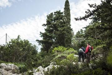 https://www.ragusanews.com//immagini_articoli/03-07-2020/il-trekking-di-esplorambiente-240.jpg