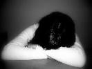 http://www.ragusanews.com//immagini_articoli/03-09-2014/si-e-tolta-la-vita-la-mamma-della-ragazza-morta-nell-incidente-col-bus-100.jpg