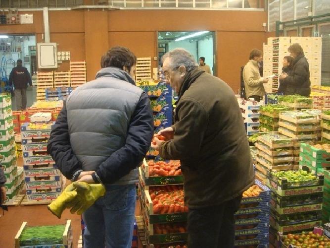 https://www.ragusanews.com//immagini_articoli/03-09-2015/truffa-a-giudizio-due-commercianti-del-mercato-di-vittoria-500.jpg