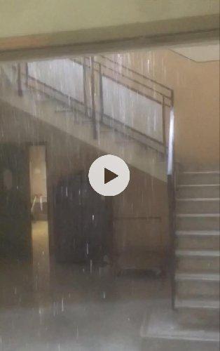 https://www.ragusanews.com//immagini_articoli/03-09-2019/piove-all-ospedale-paterno-arezzo-di-ragusa-video-500.jpg