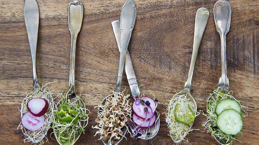 https://www.ragusanews.com//immagini_articoli/03-11-2019/dieta-sirt-il-menu-per-perdere-chili-500.jpg