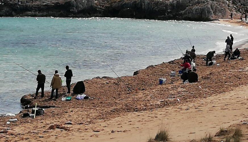 https://www.ragusanews.com//immagini_articoli/04-03-2019/invasione-orate-mare-ragusa-merito-vivaio-pachino-500.jpg