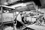 https://www.ragusanews.com//immagini_articoli/04-07-2018/anche-comisano-riccardo-cilia-cucina-figlio-magnate-100.jpg