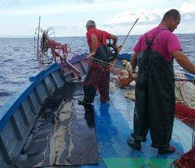https://www.ragusanews.com//immagini_articoli/04-07-2019/50-milioni-per-agricoltura-pesca-e-internazionalizzazione-240.jpg