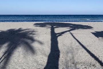 https://www.ragusanews.com//immagini_articoli/04-08-2020/1596558984-sicilia-d-estate-tra-spiagge-solitarie-e-campagne-assolate-5-240.jpg