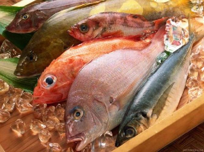 I Piatti Di Pesce Nella Sicilia Del Gran Tour Ragusa