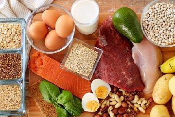 https://www.ragusanews.com//immagini_articoli/04-10-2018/proteine-guida-completa-alimentazione-240.jpg