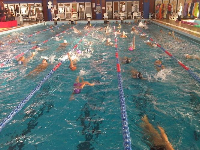 https://www.ragusanews.com//immagini_articoli/04-12-2013/a-modica-la-scuola-va-in-piscina-500.jpg
