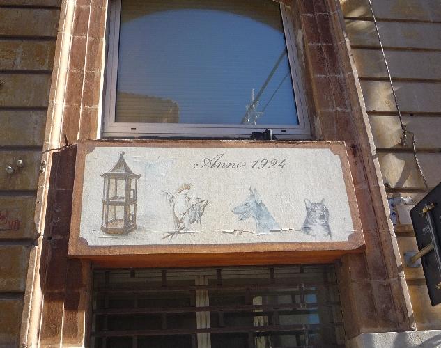 https://www.ragusanews.com//immagini_articoli/05-02-2015/1924-ragusa-il-negozio-degli-animali-500.jpg