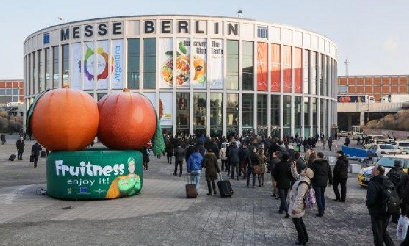 https://www.ragusanews.com//immagini_articoli/05-02-2018/vittoria-fruit-logistica-berlino-500.jpg