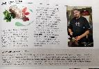 http://www.ragusanews.com//immagini_articoli/05-04-2015/scicli-su-ville-e-casali-100.jpg