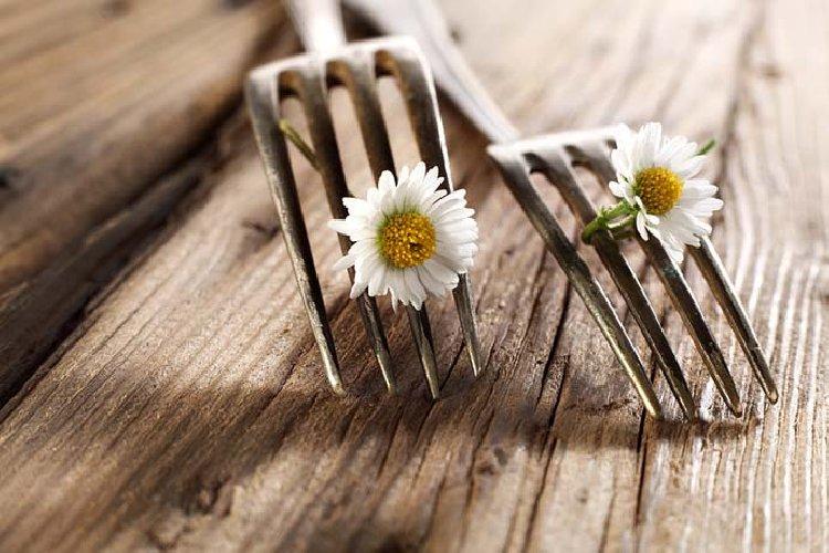 https://www.ragusanews.com//immagini_articoli/05-04-2019/dieta-di-primavera-perdi-5-chili-e-ti-depuri-500.jpg