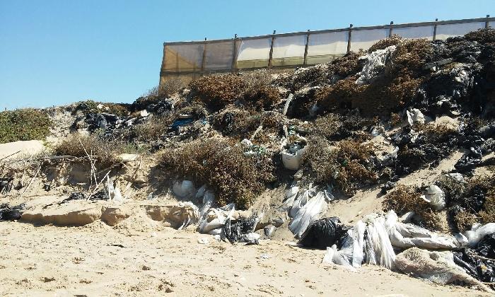 https://www.ragusanews.com//immagini_articoli/05-08-2016/inquinamento-e-disastro-ambientale-a-marina-di-acate-420.jpg