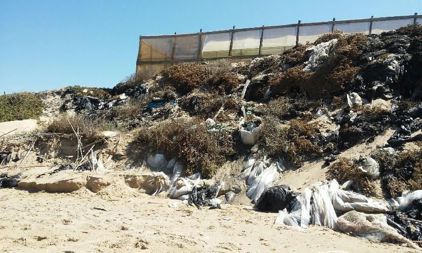 http://www.ragusanews.com//immagini_articoli/05-08-2016/inquinamento-e-disastro-ambientale-a-marina-di-acate-500.jpg