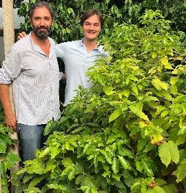 https://www.ragusanews.com//immagini_articoli/05-10-2021/1633413049-buongiorno-col-caffe-siciliano-primato-nazionale-foto-video-6-280.jpg